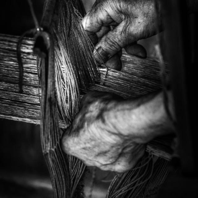 """Working Hands"" stock image"