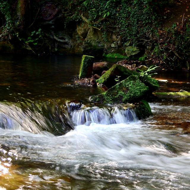 """Stream with mini waterfall"" stock image"