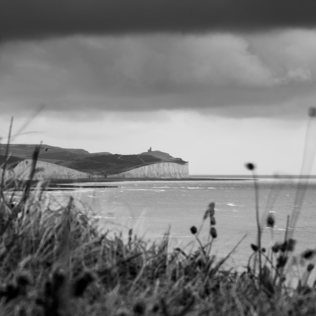 """""""Belle tout lighthouse"""" stock image"""