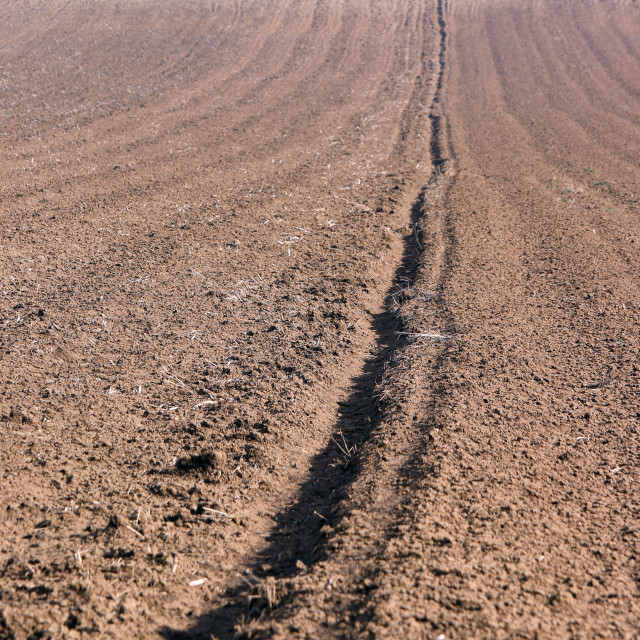 """""""Plowed field agriculture Voivodina Serbia"""" stock image"""