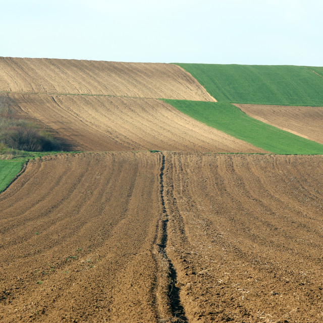 """""""Plowed field agriculture landscape Voivodina Serbia"""" stock image"""