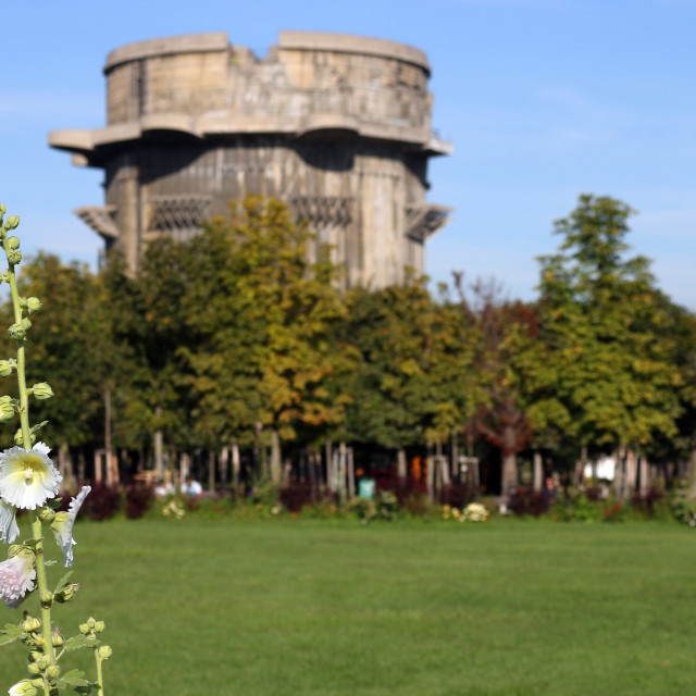 """""""flower and anti aircraft tower Flakturm in Augarten park Vienna"""" stock image"""