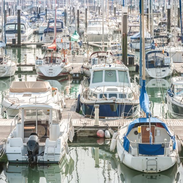 """""""yacht and boat marina"""" stock image"""
