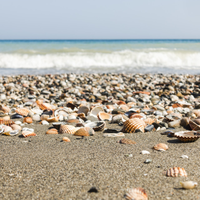 """Mediterranean sea with sea shells at beach in Spain."" stock image"