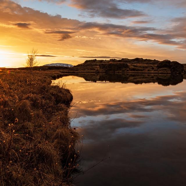 """""""Myvatn lake at sunrise, Iceland"""" stock image"""