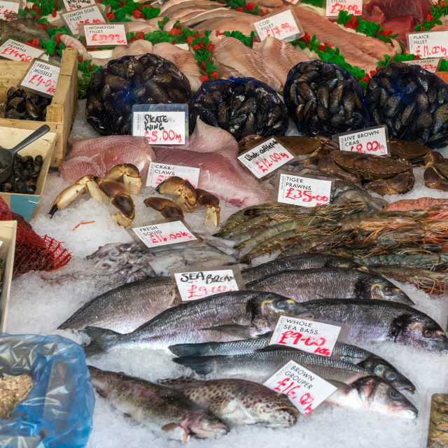 """Fishmonger's Slab"" stock image"