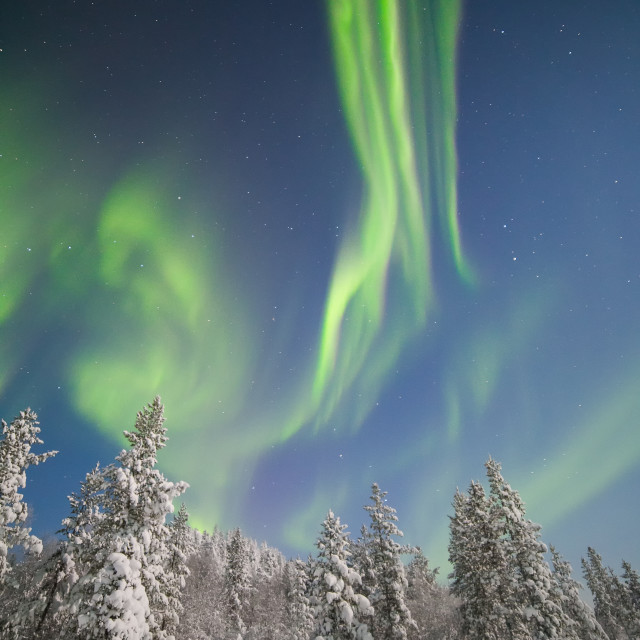 """Aurora night"" stock image"