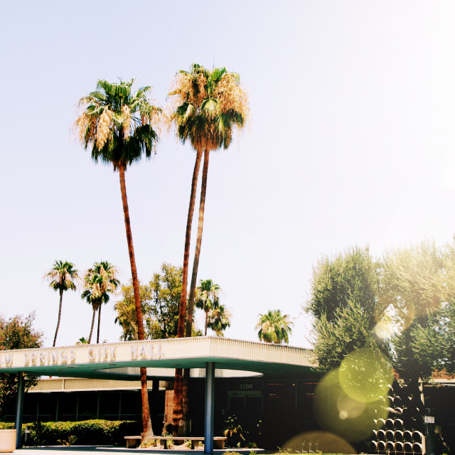 """Mid century building palm springs"" stock image"