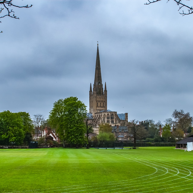 """""""Norwich Cathedral across playing fields"""" stock image"""