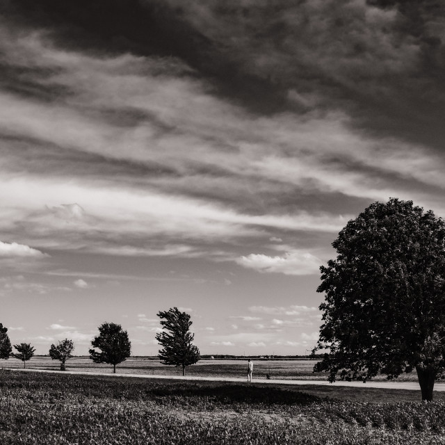 """""""Country Road, Illinois"""" stock image"""