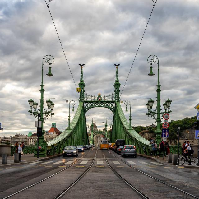 """The Liberty Bridge"" stock image"
