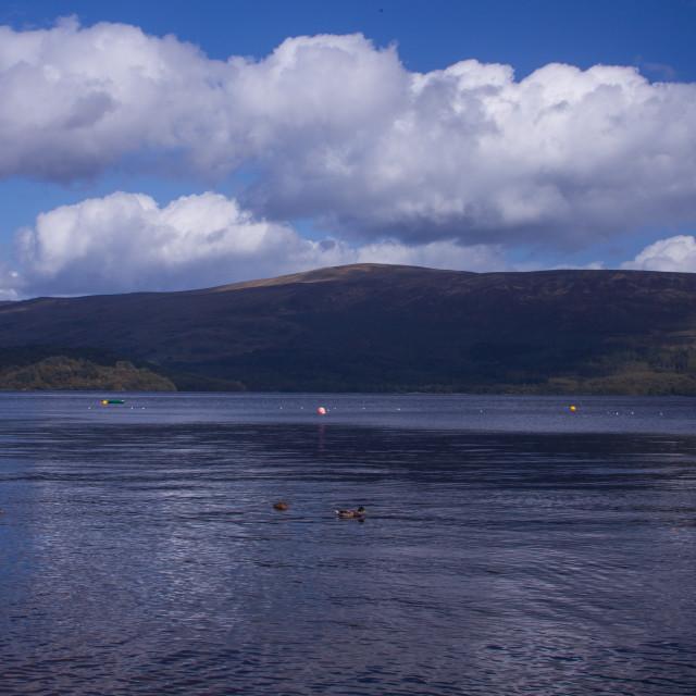 """Loch Lomand 1"" stock image"