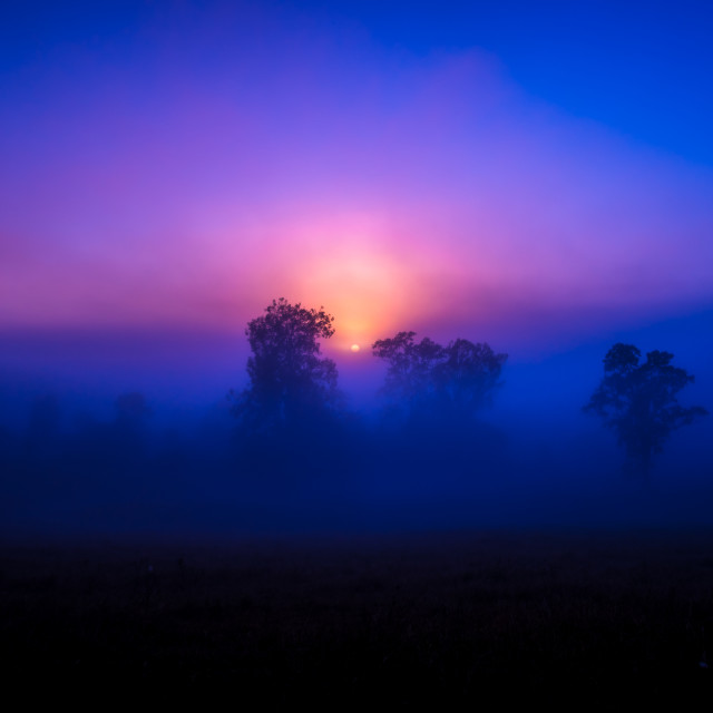 """Mystical Morning"" stock image"