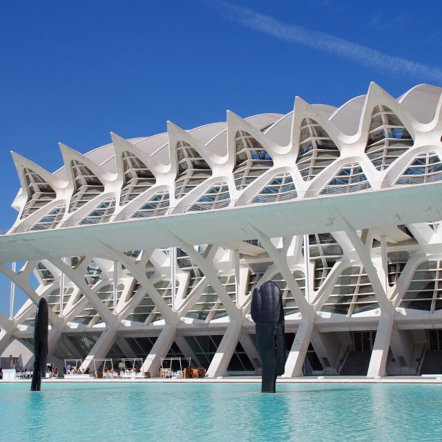 """""""The Museu de les Ciencies, Valencia"""" stock image"""
