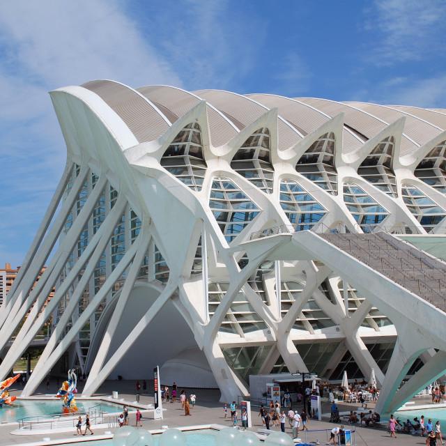 """""""The Museu de les Ciencies in Valencia"""" stock image"""