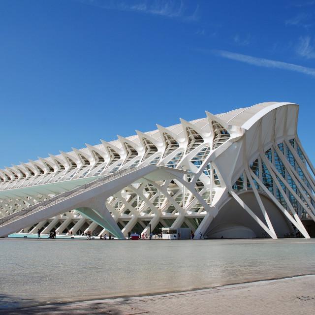 """""""Museu de les Ciencies in Valencia"""" stock image"""