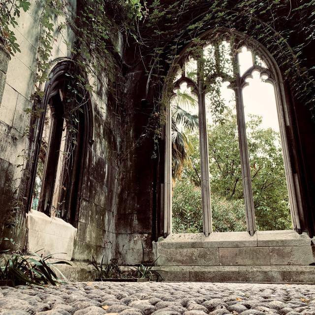 """Old church windows"" stock image"