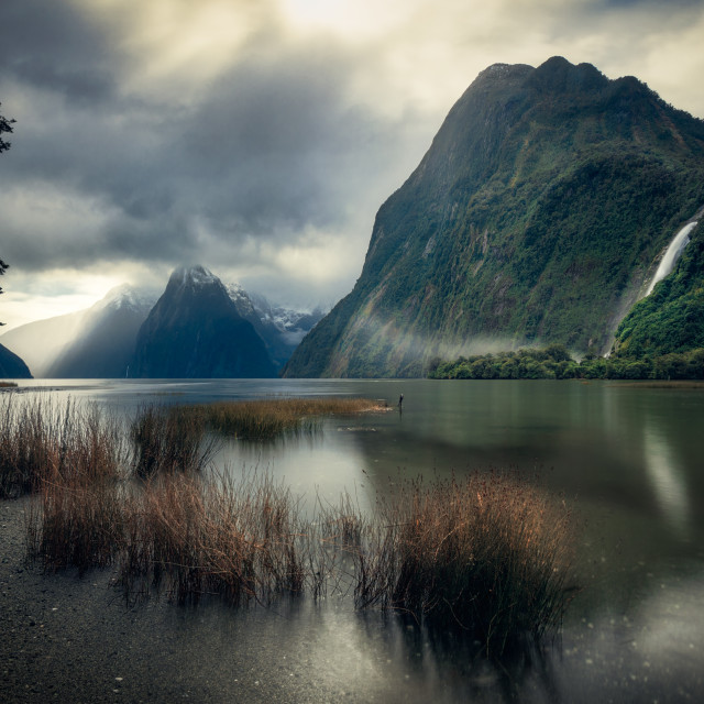 """Moody Milford Sound, Fiordland, New Zealand"" stock image"