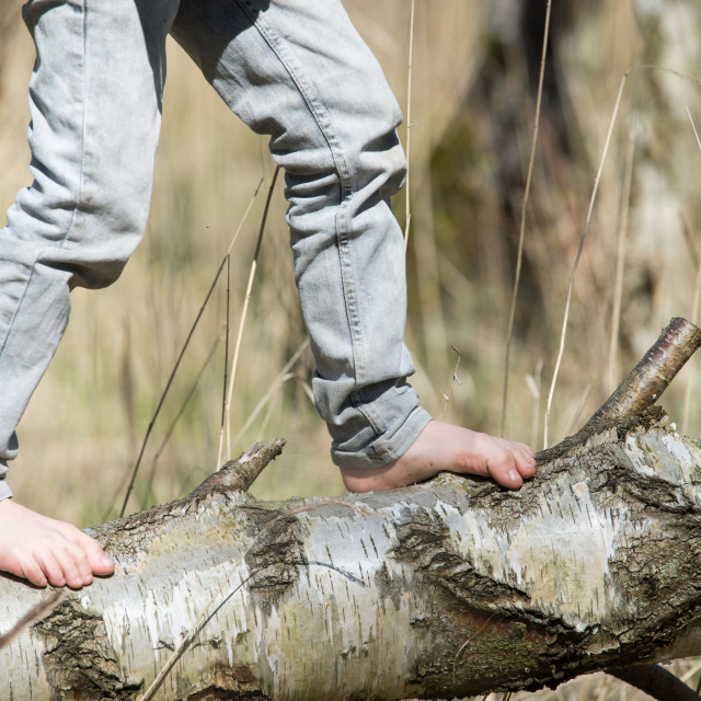 """Boy balancing on a tree with bare feet"" stock image"