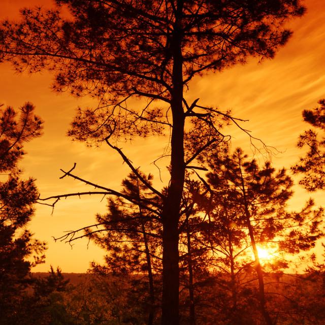 """Apremont sunrise"" stock image"