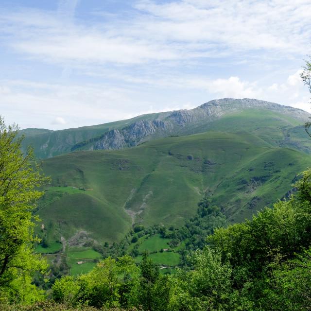"""""""pyrenean mountain"""" stock image"""