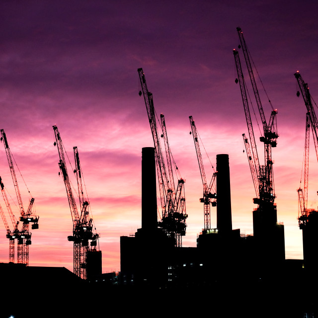 """""""Silhouettes of cranes"""" stock image"""