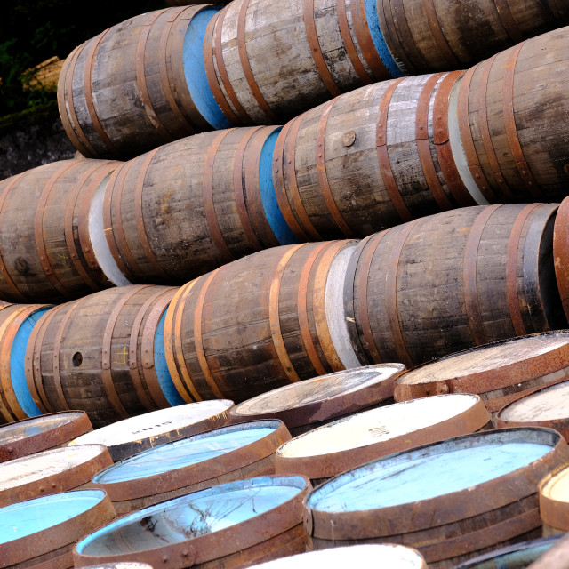 """""""A selection of wooden barrels used in the distillery and brewing industry"""" stock image"""