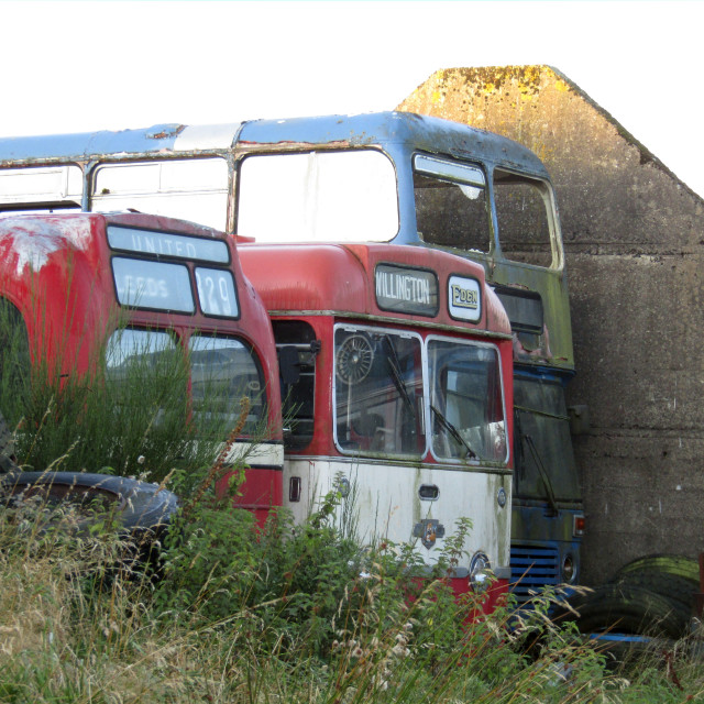 """Derelict buses in field"" stock image"