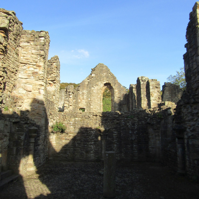 """Shadows in Finchale Priory"" stock image"