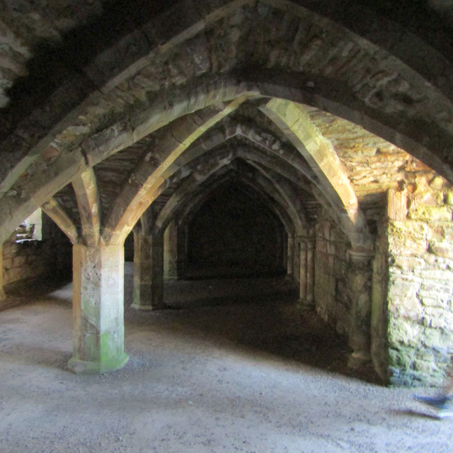"""Underneath Finchale Priory"" stock image"