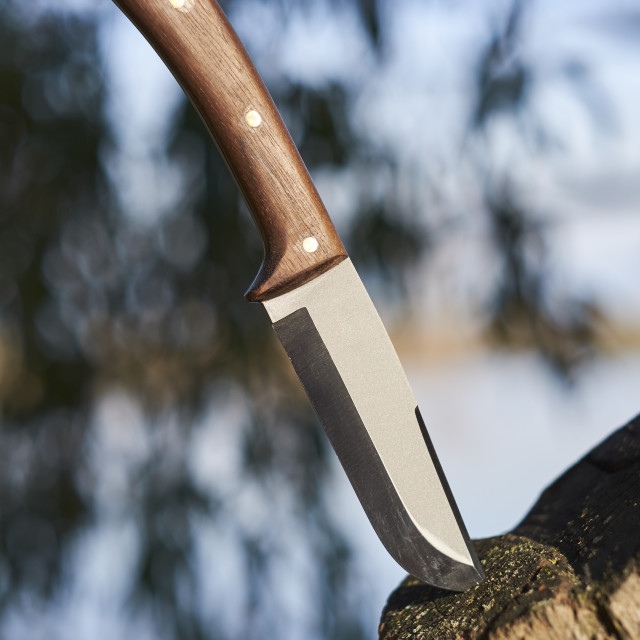 """Bushcraft survival knife sticking in a tree"" stock image"