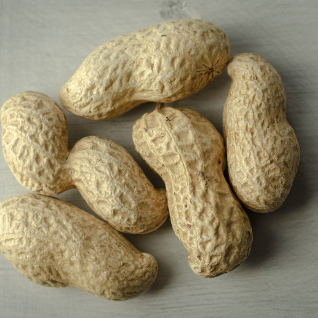 """Dried Peanuts"" stock image"