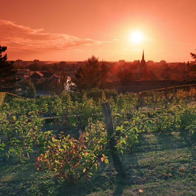 """""""Montargis sunrise"""" stock image"""