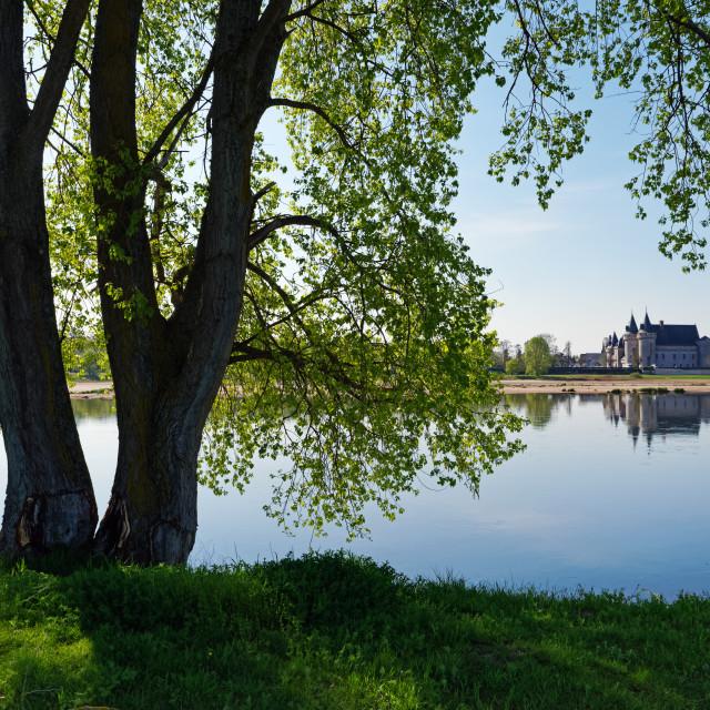 """""""Sully-sur-Loire"""" stock image"""