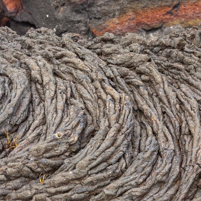 """""""1096 - Galápagos: Rope Lava"""" stock image"""