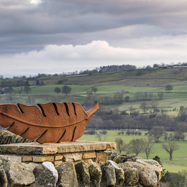 """The Feather Sculpture Artwork Whistle Crag, Teesdale"" stock image"