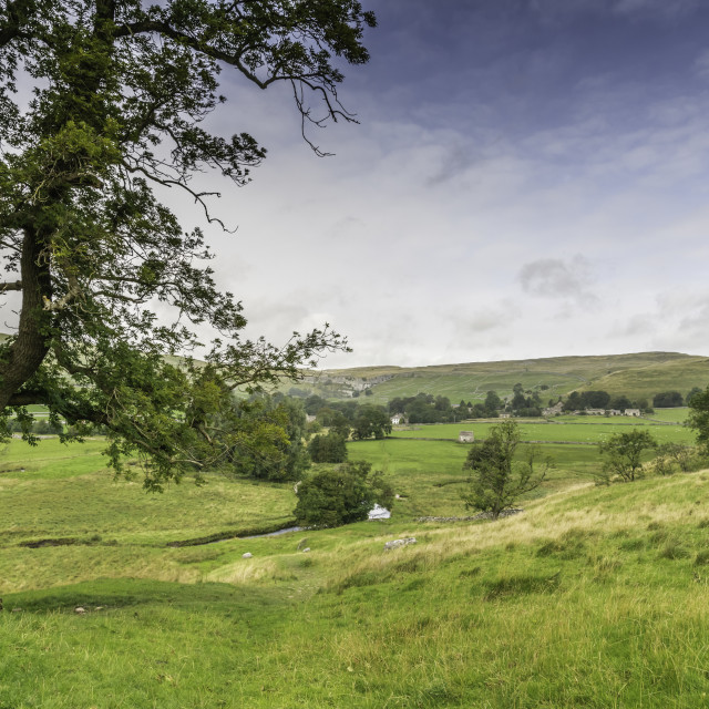 """""""Yorkshire Dales"""" stock image"""