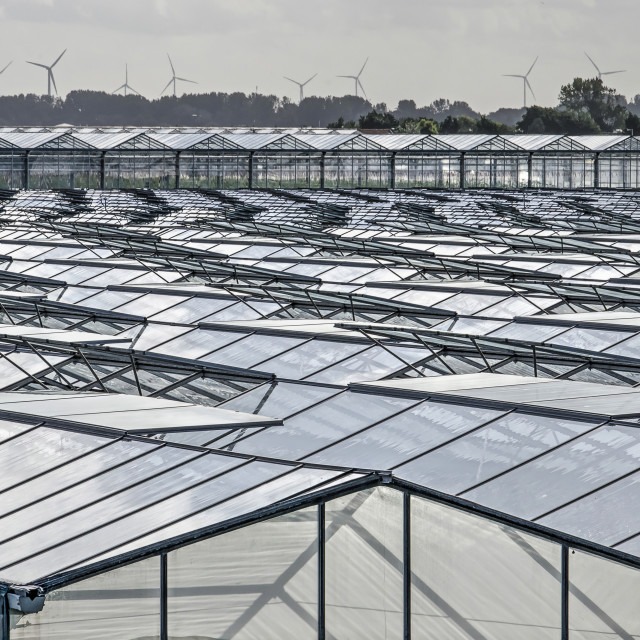 """""""Greenhouses and windturbines"""" stock image"""
