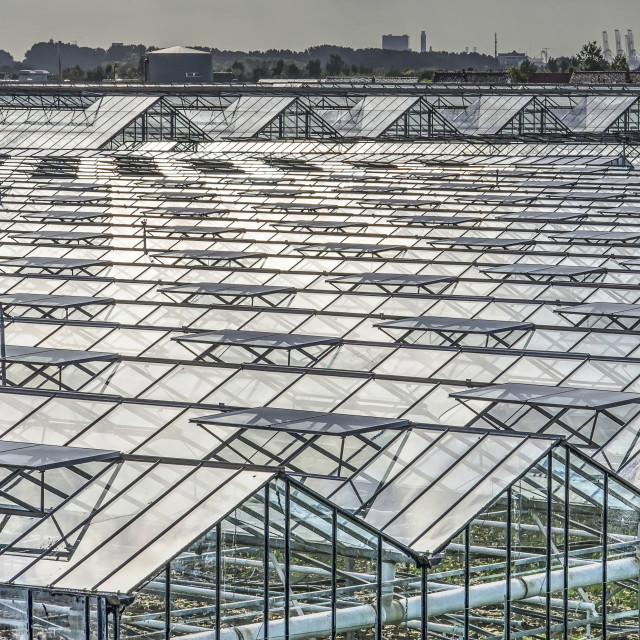 """""""Greenhouse roof patterns"""" stock image"""