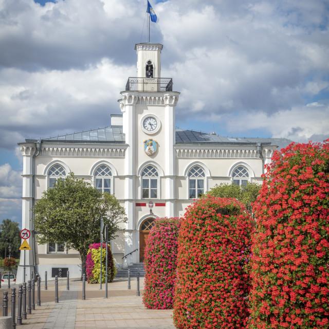 """Ciechanow City Hall"" stock image"