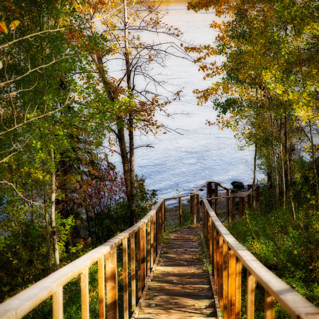 """""""A wooden stairway with hand rails leading down to a river between a forest of autumn colored trees in a fall afternoon landscape"""" stock image"""