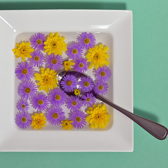 """""""Abstract Plate dish with flowers"""" stock image"""