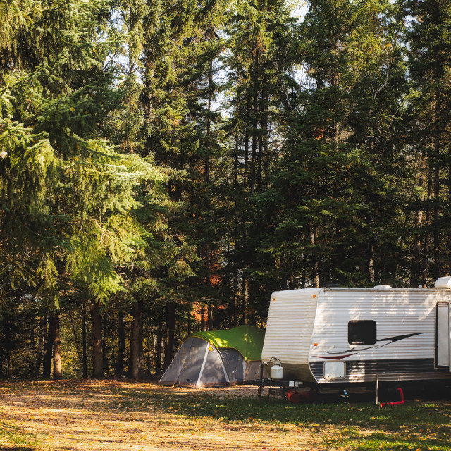 """""""A camper trailer and tent surrounded by tall pine trees parked in a deserted campsite in a autumn daytime landscape"""" stock image"""