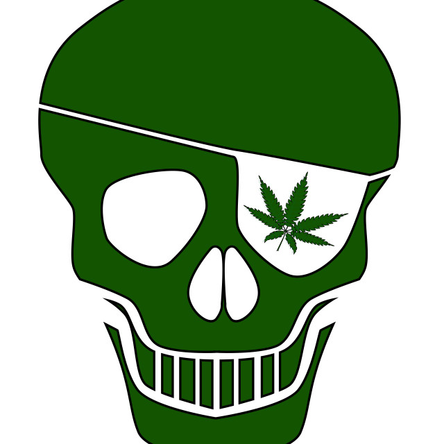 """""""Canabis Patch Skull"""" stock image"""