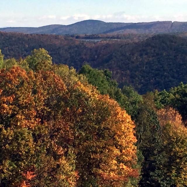 """Autumn Color"" stock image"