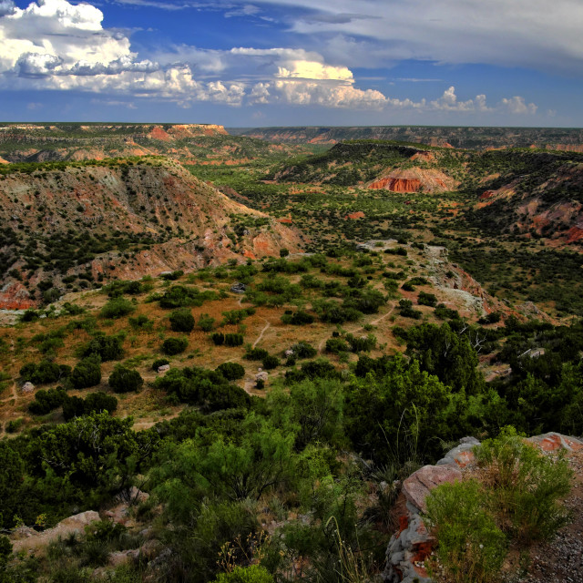 """Palo Duro Canyon"" stock image"