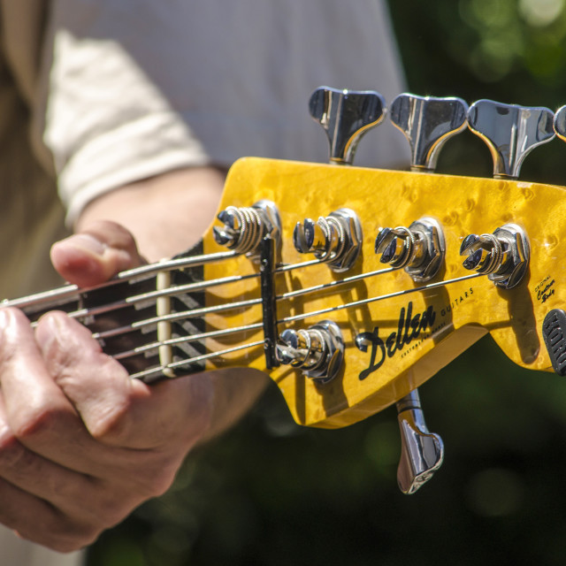 """""""Playing a five string bass"""" stock image"""