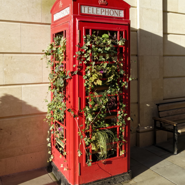 """""""Traditional red telephone box filled with plants"""" stock image"""