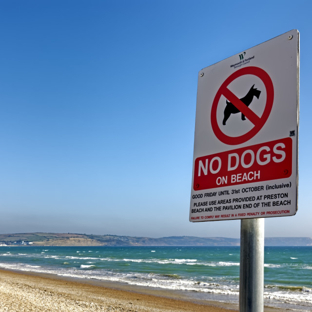 """No Dogs On Beach sign, Weymouth, Dorset, UK"" stock image"