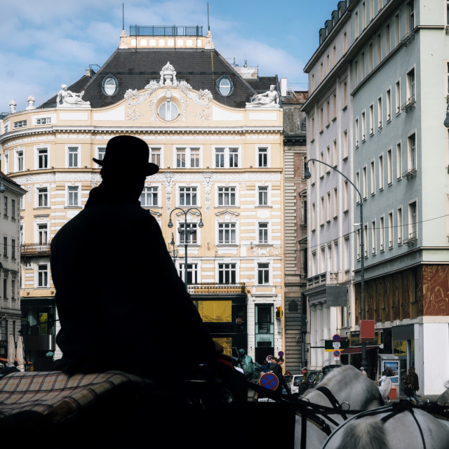 """Silhouette of coachman with horse-drawn carriage in Vienna."" stock image"